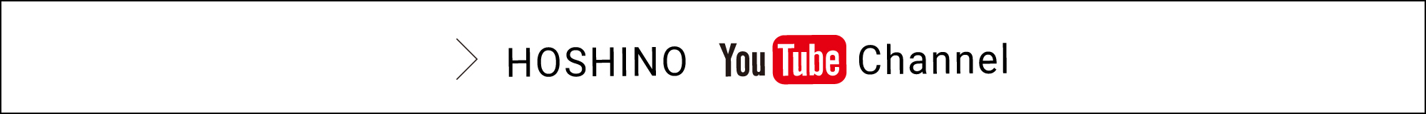 &HOSHINO channel youtube